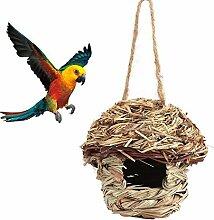 Fdit Cage Nid Oiseaux Perroquet Paille tissée