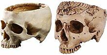 Fenteer 2 Pièces Sculpté Crâne Modèle Plante