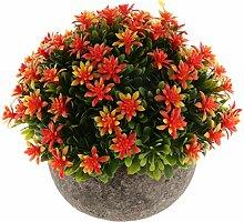 Fenteer Fleur Artificielle Gypsophila Succulent