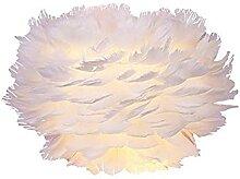 Feuille murale, abat-jour en plumes pour plafond