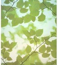 Film décoratif pour vitre vitrostatique Feuillage