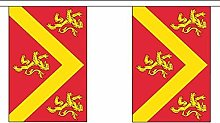 Flagmania®Anglesey British County Guirlande de 20