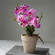 Fleurs Artificielles Phalaenopsis Art ART