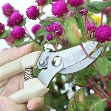 FLYAND Outil Ciseaux Jardin Portable