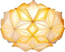 FREENN Plafonnier LED Moderne, 24W Lampe de