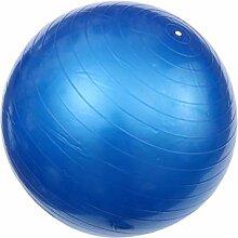 Garneck 600G Fitness Yoga Ball Anti-Déflagrant
