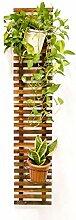 GAXQFEI Support de Plante Mural Support de Plante