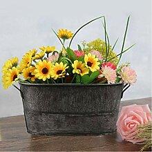 generio Pot de Fleur Vintage Ovale en Fer étamé