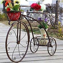 gengxinxin De Plante en Pot De Fleurs Fleurs