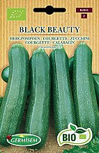 Germisem Bio Graines Courgette BLACK BEAUTY