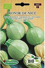 Germisem Bio Graines Courgette RONDE DE NICE