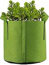 GOOHEAL 5 Pcs 10 Gallon Plante Verte Semis