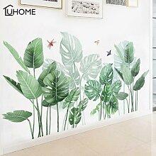 Grande plante tropicale verte feuilles