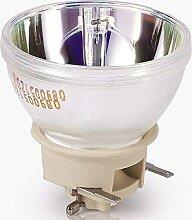 GreenBale Lampe de Vidéoprojecteur pour InFocus
