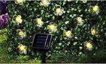 Guirlande de 30 lampes à fleurs solaires à LED :