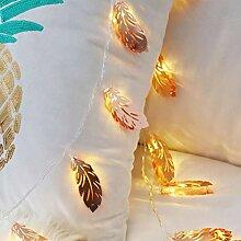 Guirlande Lumineuse à LED, Alimentation par Pile