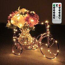 Guirlande lumineuse LED d'intérieur et