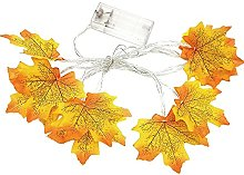 HAOJON Guirlande lumineuse pour Halloween -
