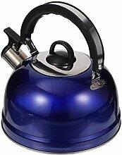 HEMOTON Bouilloire sifflante en acier inoxydable -