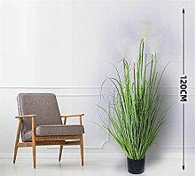 HHF Plantes artificielles à l'intérieur