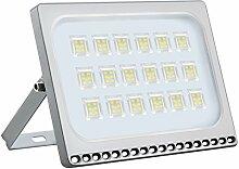 Himanjie Imperméable IP67 100W LED Spot