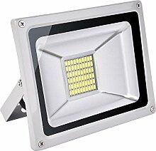 Himanjie LED Projecteur Extérieur 30W 60 LEDs,