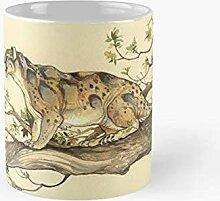 Histoire naturelle - Dinictis Felina Classic Tasse