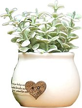 Home textile decoration® Cuiyun herbe Vase en