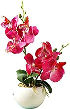 Home textile decoration® Double phalaenopsis