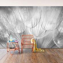 home24 Papier peint pissenlit noir et blanc