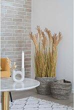 home24 Plante artificielle Sorghum