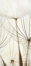 home24 Tableau magnétique Herbes douces