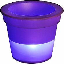 Homea 5ECL192PR Pot Lumineux à Pile plus 1LED,