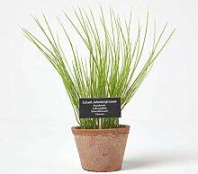 HOMESCAPES Plante Verte Artificielle en Pot