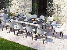 HOMIFAB Table de Jardin Extensible 8 à 12