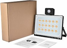 Hommoo - 20 PCS 100W Projecteur LED SMD Lampe