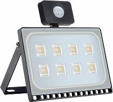 Hommoo - 5 PCS 50W Projecteur LED SMD Lampe