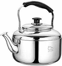 Household products - Bouilloire à thé,