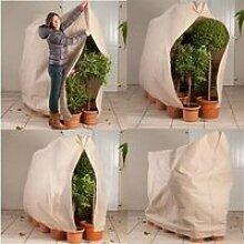 Housse d'hivernage pour plante et arbuste 120