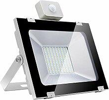 HPDOM 100W 8000LM Projecteur LED Detecteur