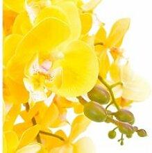 Icaverne - fleurs et plantes artificielles