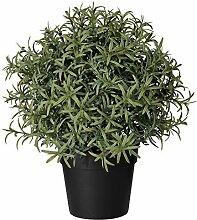 IKEA 903.821.13 Fejka Plante Artificielle en Pot