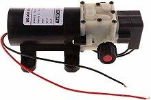 KAIBINY Pompe à eau 75PI 4.5L / min Mini Pompe à