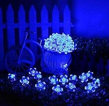 Kansang Guirlande de fleurs 40 LED - Pour