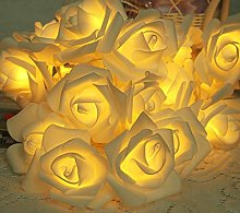 Kansang Guirlande lumineuse 20 LED en forme de