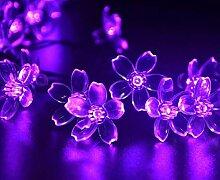 Kansang Guirlande lumineuse solaire 50 LED -