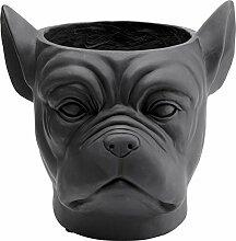 Kare Design Cache-Pot Bulldog