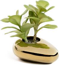 Kave Home - Plante artificielle Adenium obesum