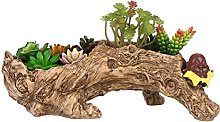 KawaiiSimulation Racine D'arbre Plante