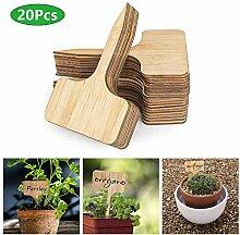 KeKeandYaoYao 20 Pcs Bambou En Forme De T Plante